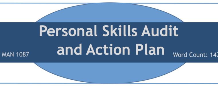 Personal Skills Audit & Action Plan – Developing Professionals (Man 1087)